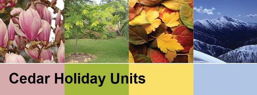 cedar holiday units header picture accommodation in bright for all seasons